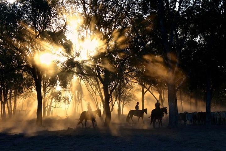 Passeggiata al tramonto nella campagna senese